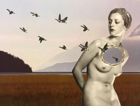 Migrating, collage by Nikki Laxar